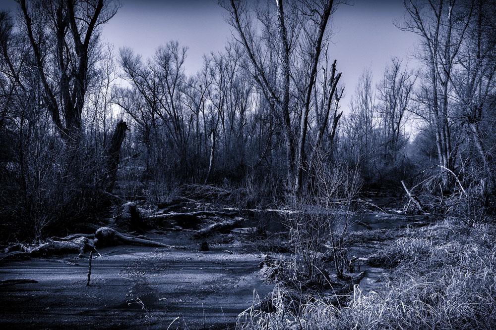 Winterabend am Schwarzen Moor (1944)